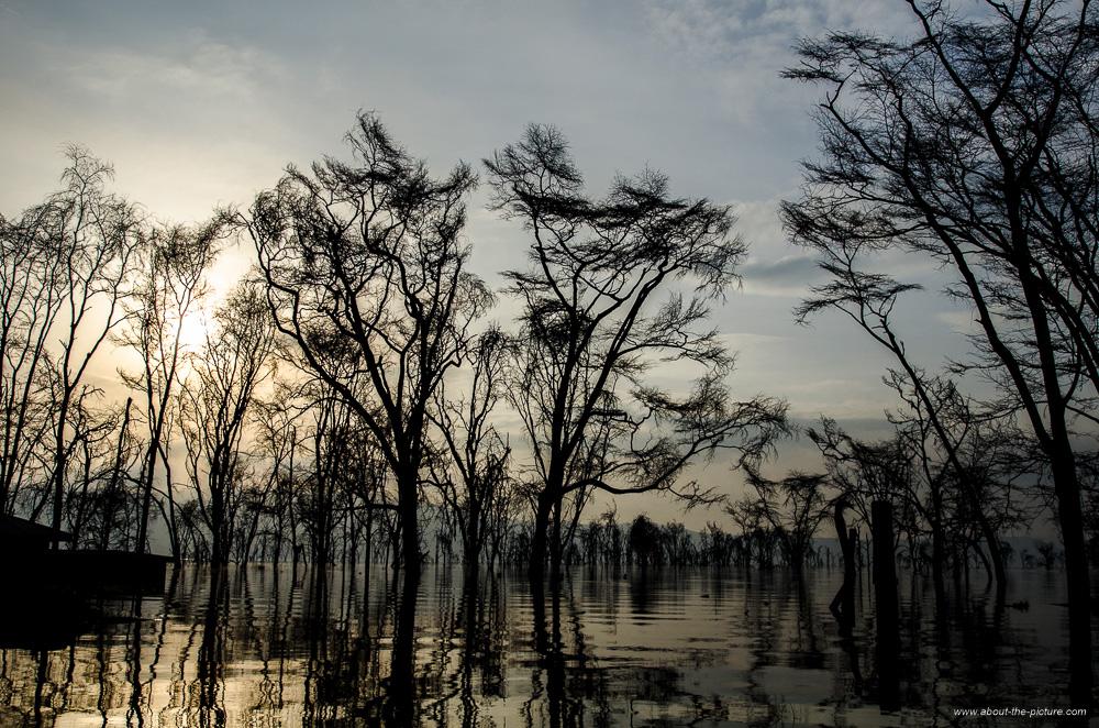 Heavily-flooded Lake Nakuru